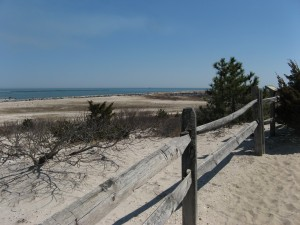 Barnegat Inlet view from Forest Trail
