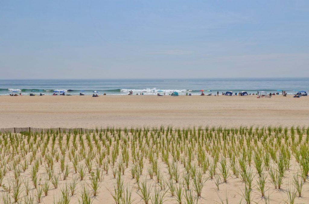 Businesses For Sale In Beach Haven Nj